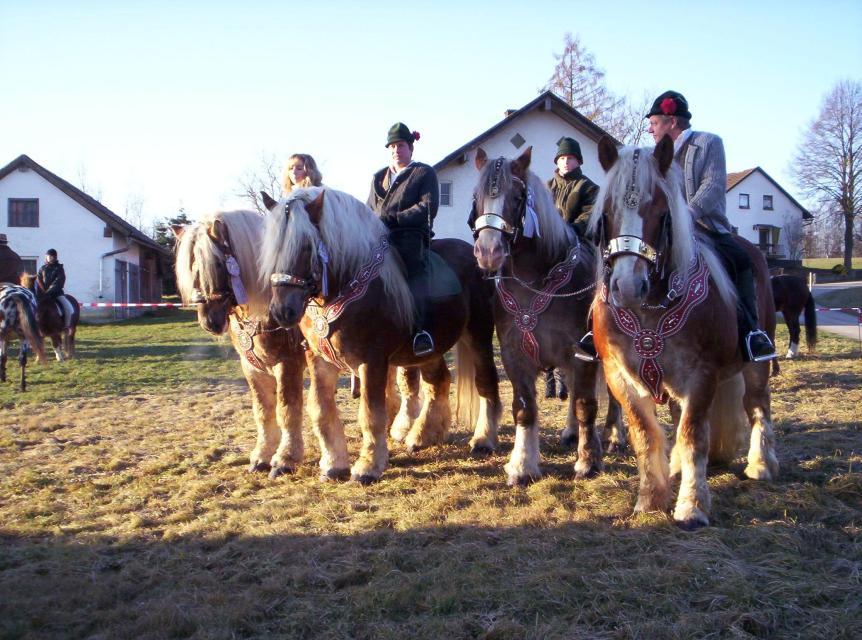 Stephlinger Pferderitt des Förderverein Stephlinger Pferderitt