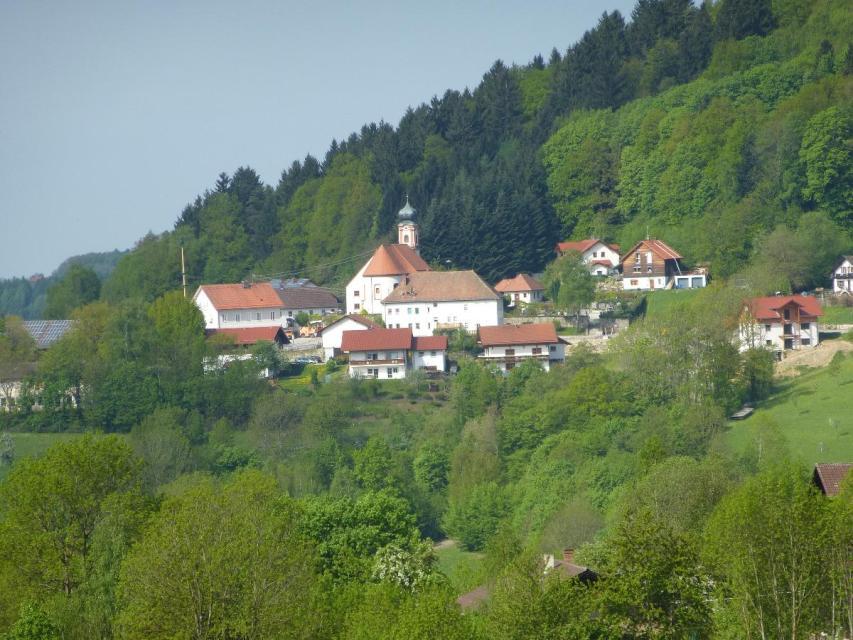 Maibaumaufstellen mit Motorsägenwettbewerb in Perasdorf