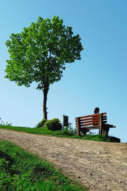Naturlehrpfad Bogenberg