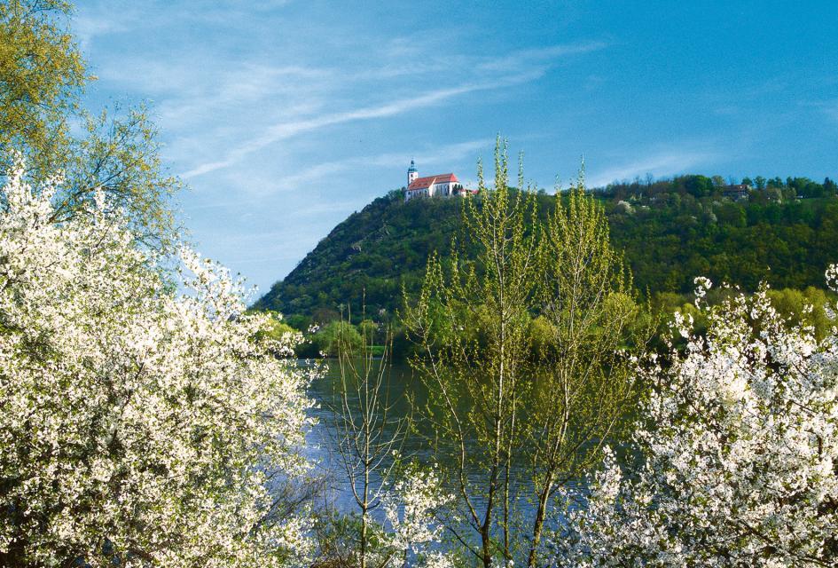 Museums- und Kirchenführung auf dem Bogenberg