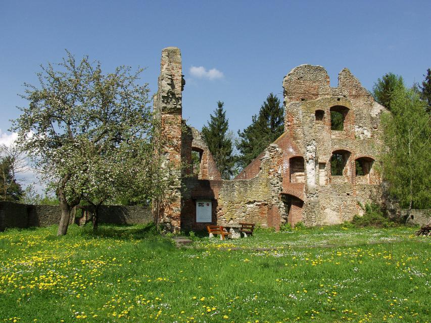 Burgruine Haibach