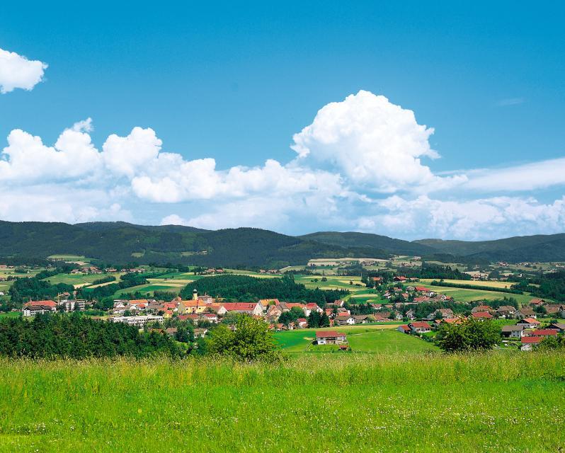 Landschaftsführung in Schwarzach