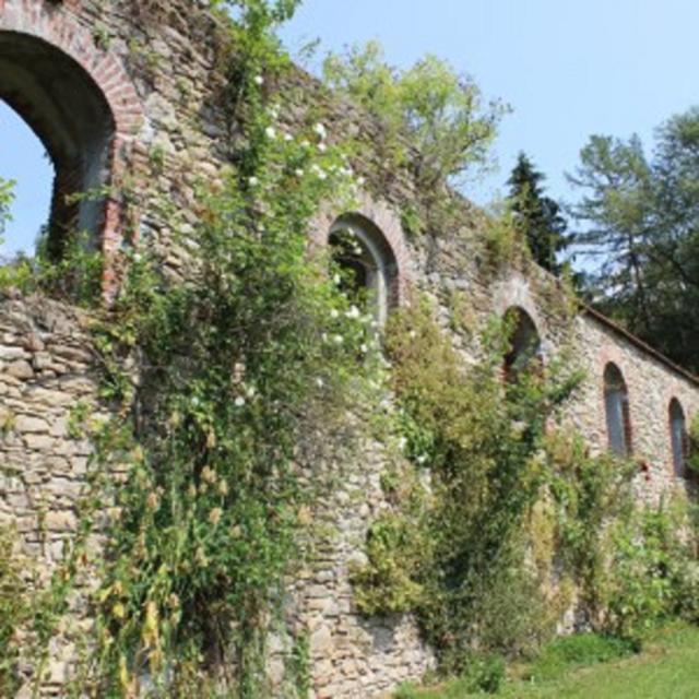 Burgruine Degenberg bei Schwarzach
