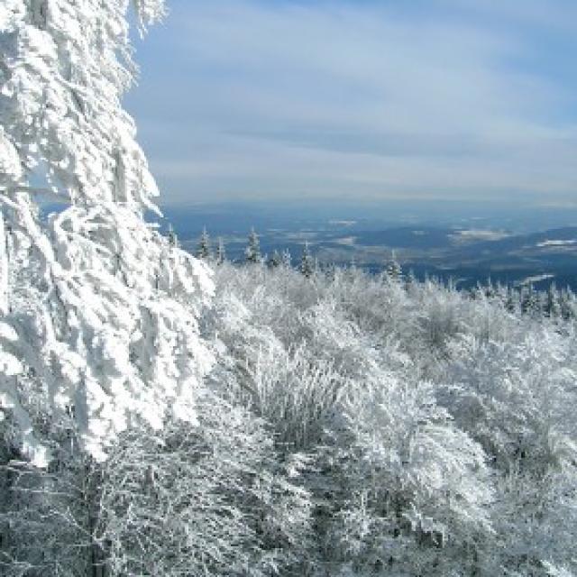 Ausblick vom Hirschenstein im Winter -
