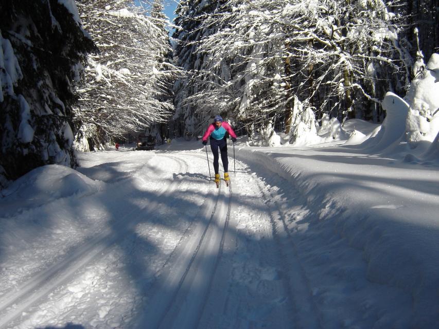 Langlauf in Schwarzach