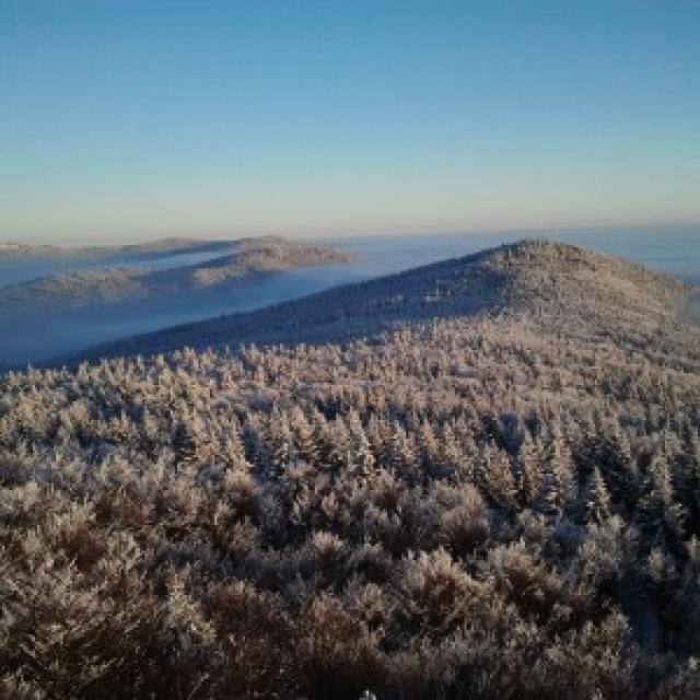 Schneeschuhwandern in Perasdorf