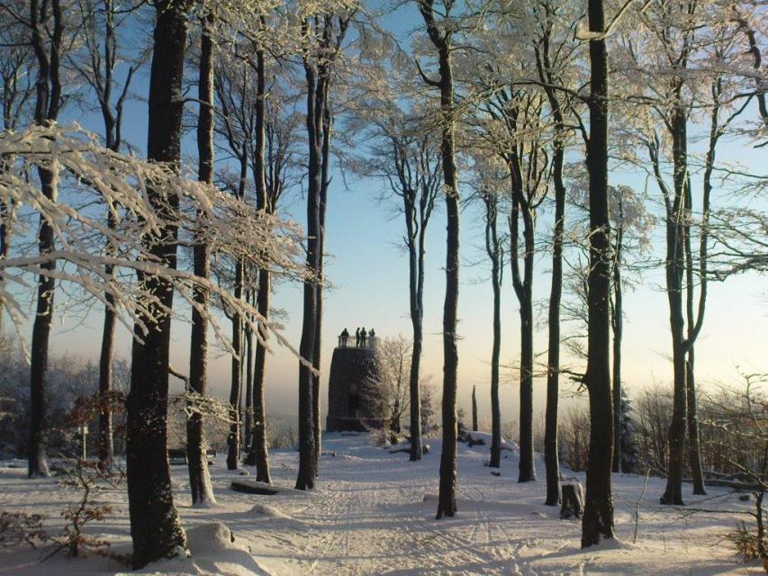 Schneeschuhtour von Grandsberg auf den Hirschenstein