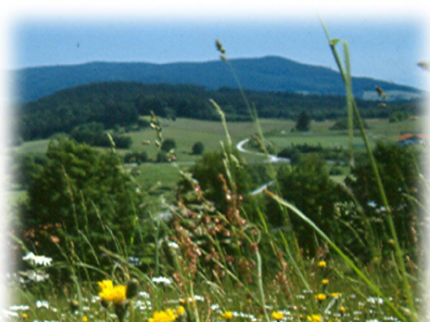 Englmarbachtal