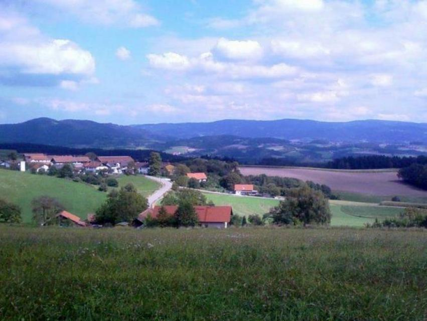 Zuweg Goldsteig - Nr. 37 Falkenfels - Riedelhänge