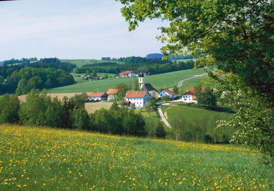 Via Nova Etappe 1: Metten - Schwarzach