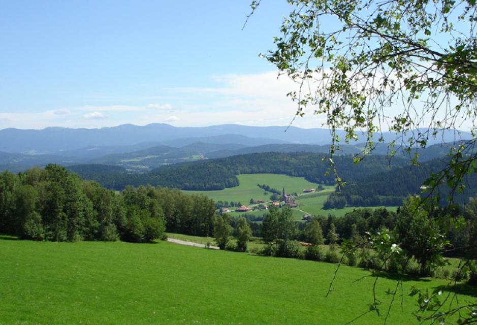 Baierweg - gesamter Verlauf: Straubing - Furth im Wald
