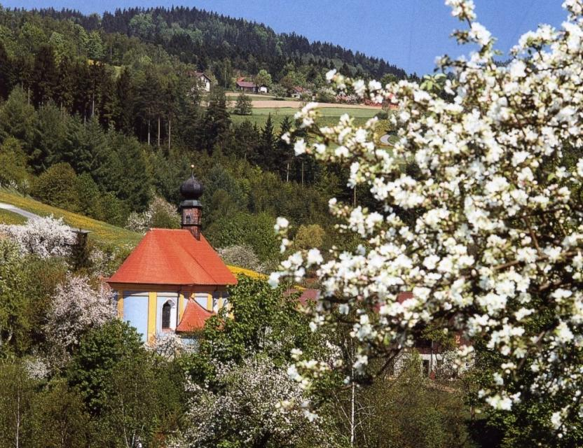 Baierweg - 1. Etappe: Straubing - Neukirchen/Haggn