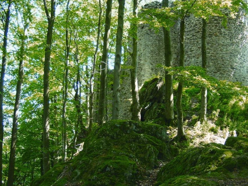 Tourist-Information Rimbach -