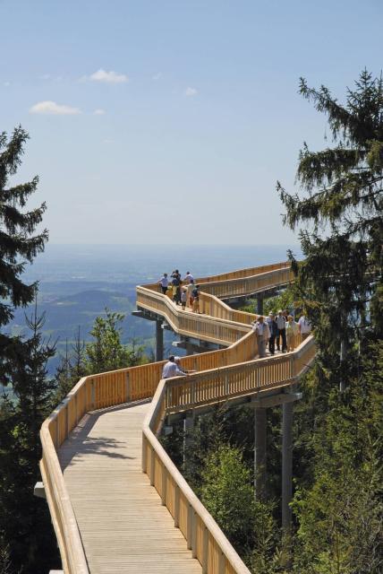Tour zum Waldwipfelweg