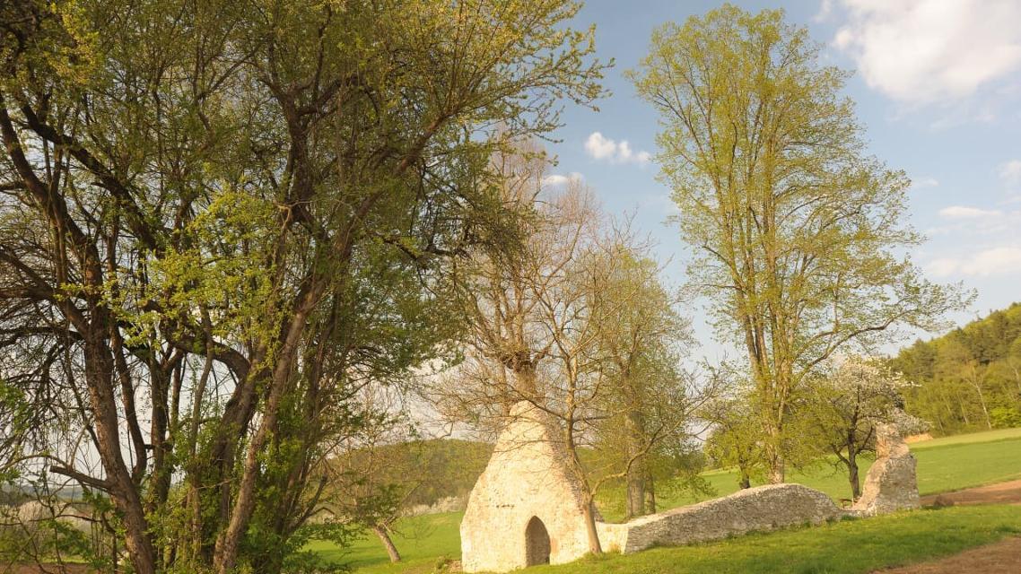 Kapellenruine Arzlohe