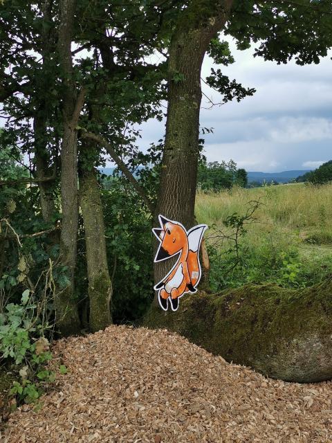 Fuchs am Wegesrand