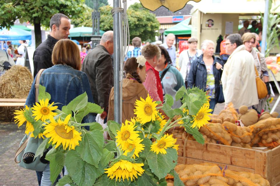 Odenwälder Kartoffelmarkt