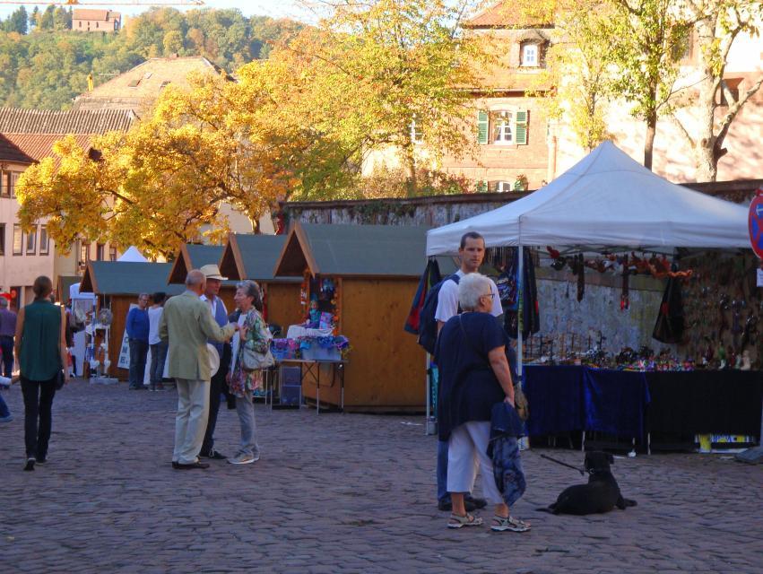 Veranstaltungen Odenwald