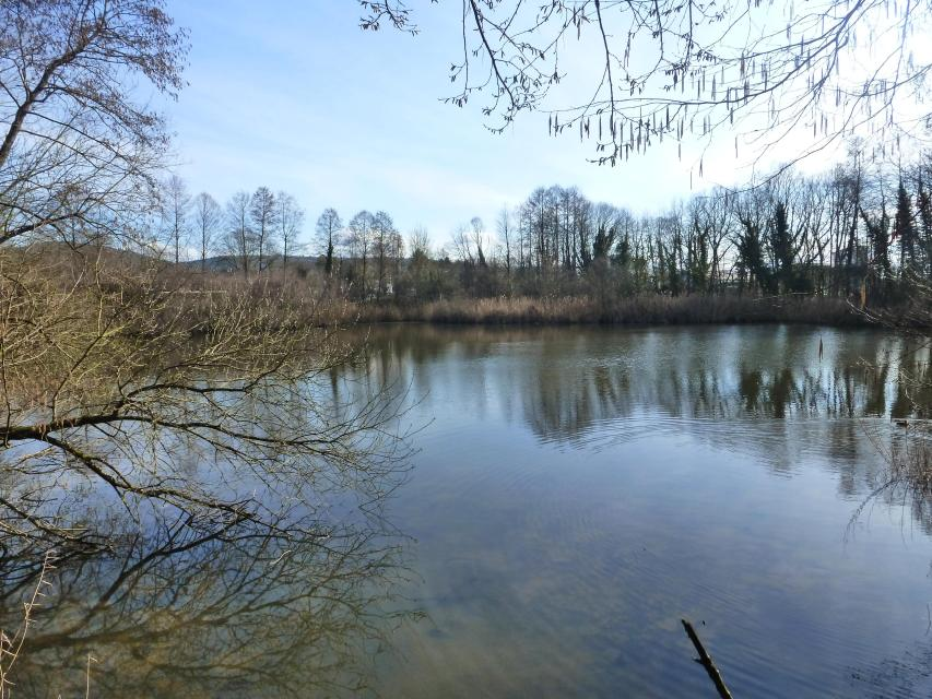 Geopark-vor-Ort – Michelstadt: Sehenswürdigkeiten und Geschichte entlang des kulturhistorischen Wand...