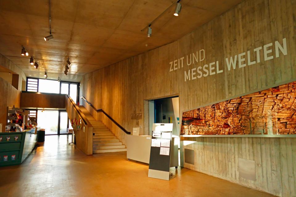 EIERLEI am UNESCO-Welterbe Grube Messel