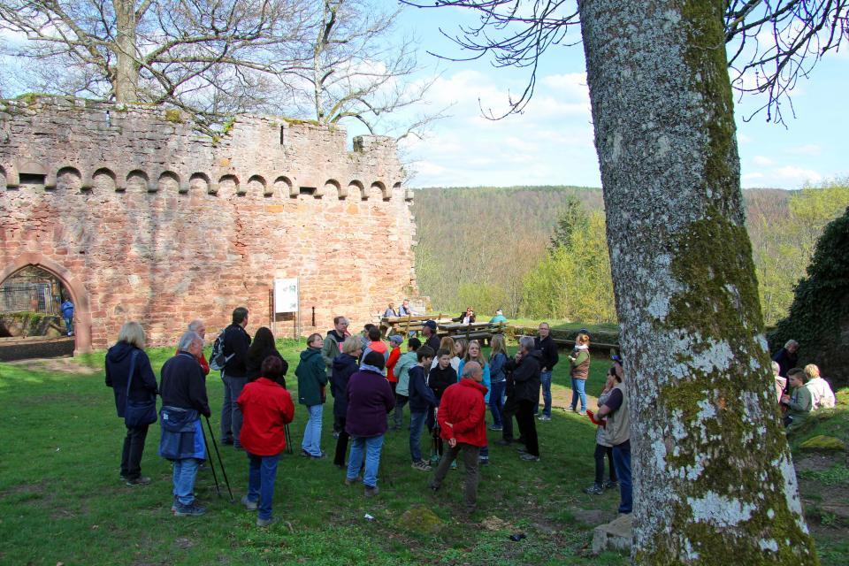 Öffentliche Führungen auf Burg Wildenberg