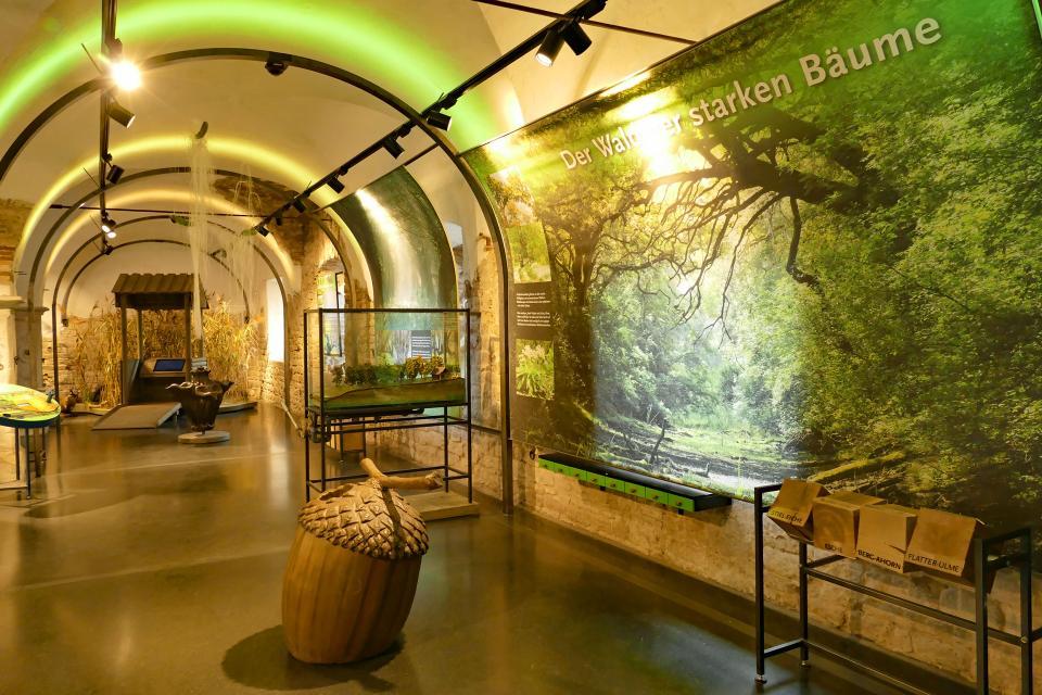 Umweltbildungszentrum der Schatzinsel Kühkopf