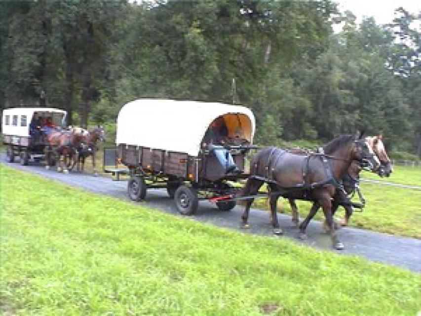 Die Breuberger Planwagenfahrt ins Grüne