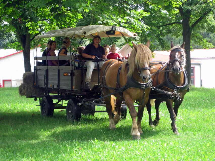 Breuberger Tagesfahrt mit dem Planwagen