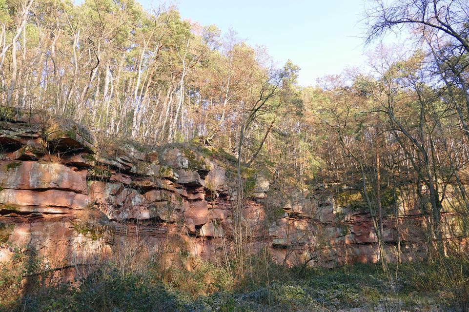 Mömlingen und seine versteinerte Flusslandschaft