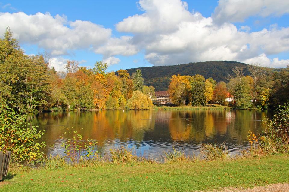 Seegarten Amorbach -