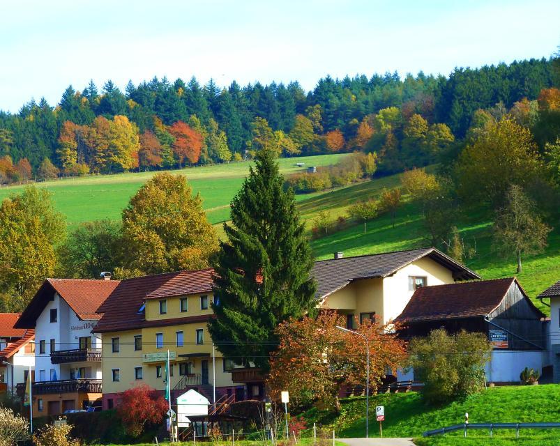 Gasthof Zur Krone Gammelsbach