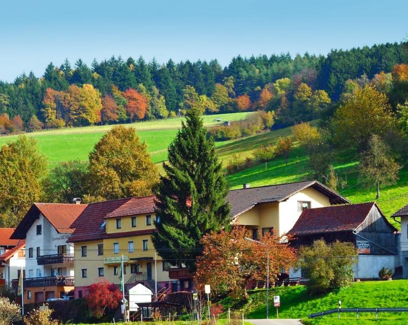 """BE-Hotel-Gasthof """"Zur Krone"""""""