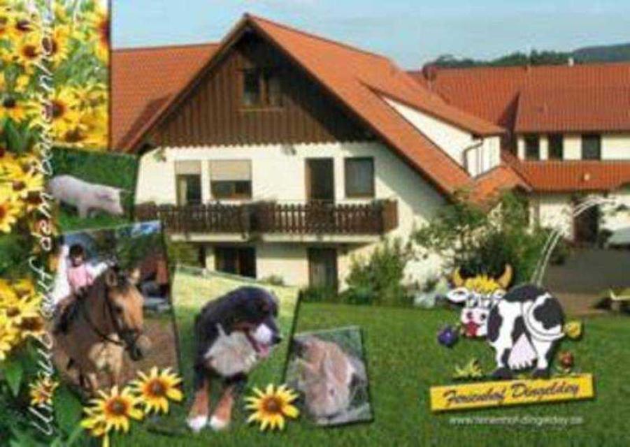 Kinder- und Ferienbauernhof Dingeldey