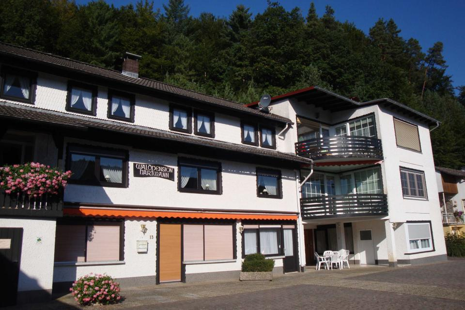 Waldpension Hartmann