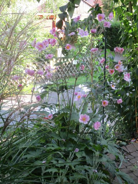 Ferienwohnung Blumenschein
