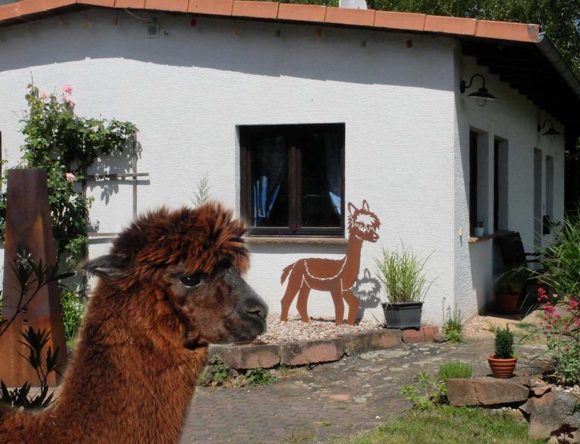 Bungalow Haus Alpaka