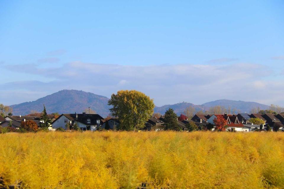 - Gemeinde Einhausen