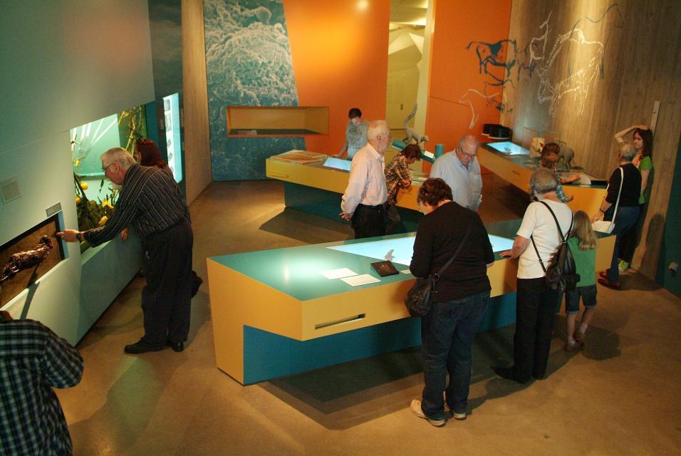 Grube Messel – Führung durch das Besucherzentrum