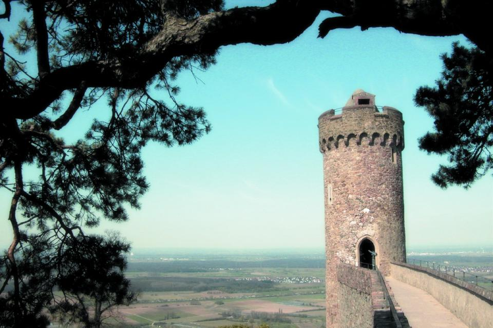 Führung durch die Schlossruine in Auerbach