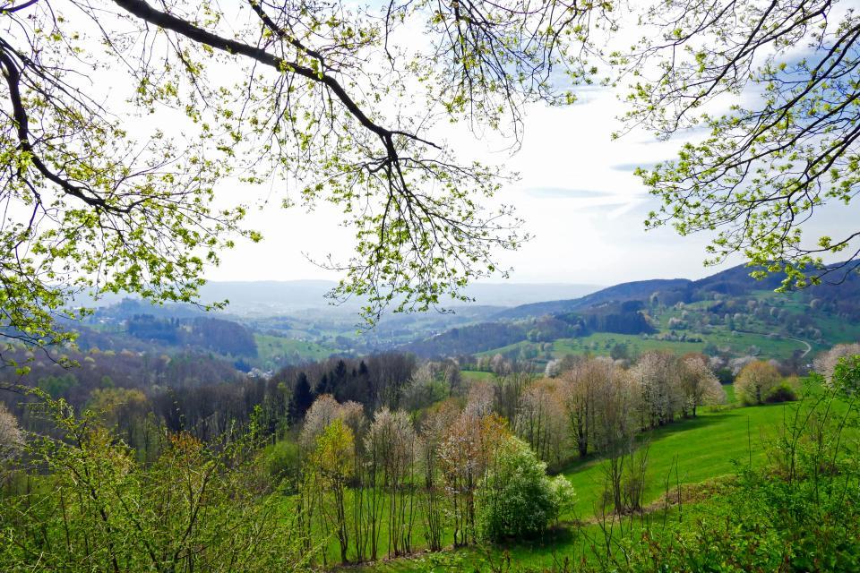 Wandern auf dem Alemannenweg in 7 Tagen
