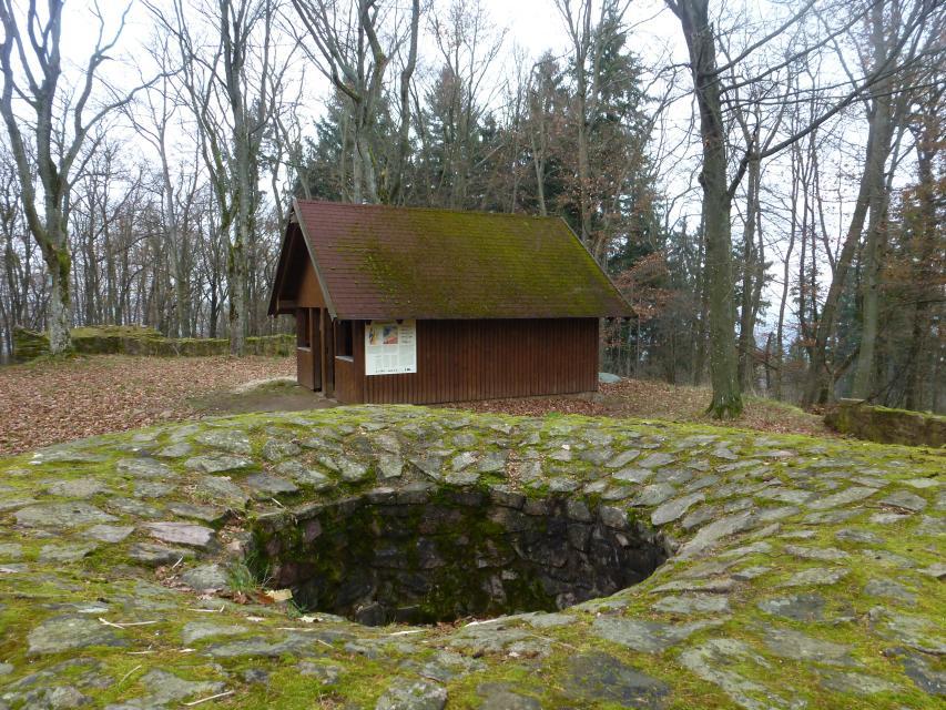 Burg Schnellerts