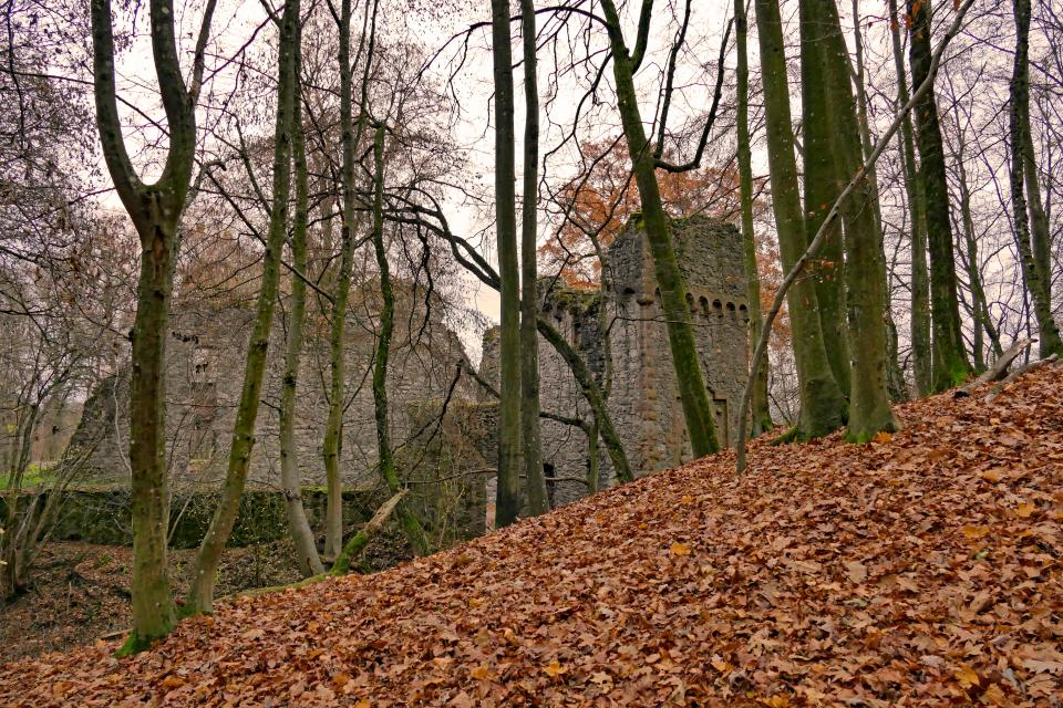 Burg Rodenstein