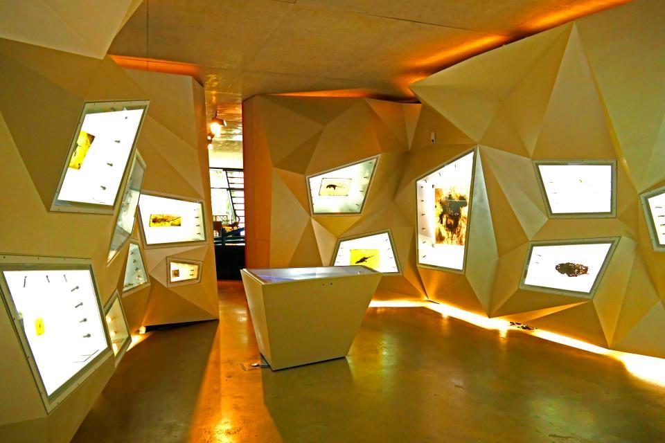 UNESCO-Welterbe Grube Messel - Besucherzentrum -Geopark-Eingangstor Nord