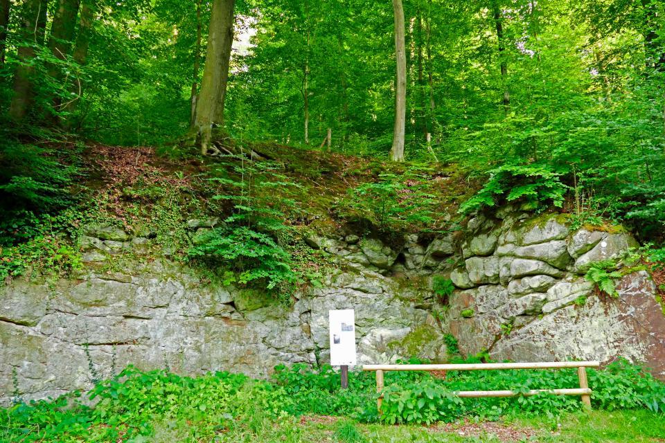 Steinbruch Rohrbach