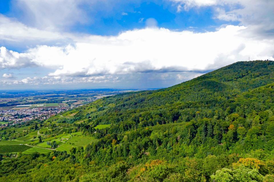 Blick zum Melibokus - Odenwald Tourismus GmbH