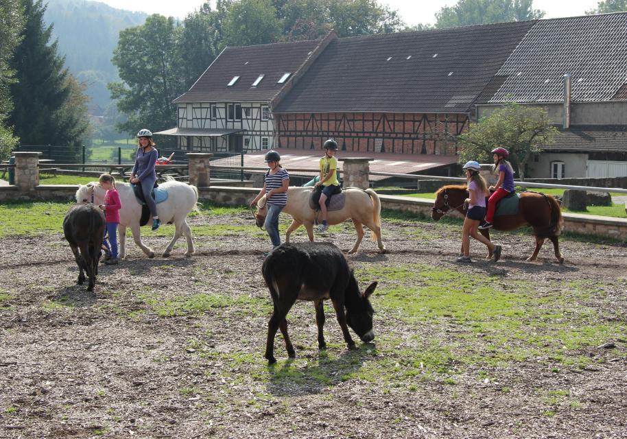 Kinderparadies Hohenloher Hof