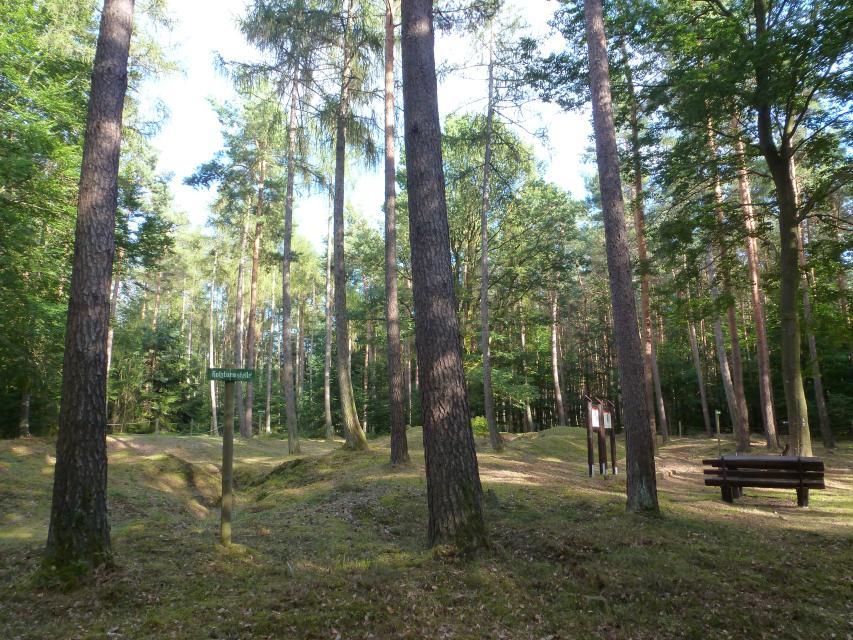 """Odenwald-Limes: Römischer Wachturm """"Im Lützelbacher Bannholz"""""""