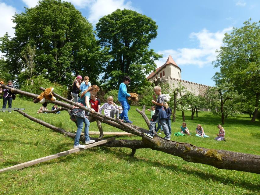 - Schloss Reichenberg