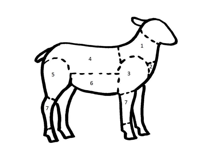 Die Teilstücke des Lamms und ihre Verwendung