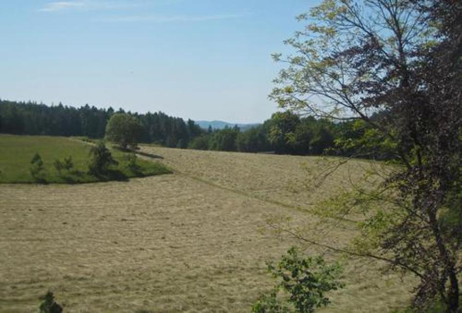 Nordic Walking Tour - Durchs idyllische Gassbachtal